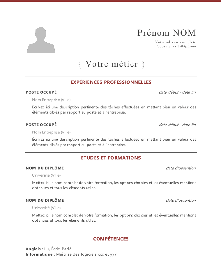 French cv template french cv spiritdancerdesigns Choice Image